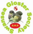 Swansea Gloster Society